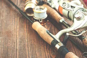Best Surf Rod REVIEWS